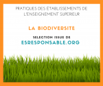 la_biodiversite_selection_issue_de_esresponsable.org.png